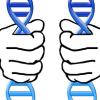 Η αξιοπιστία της ανάλυσης του D.N.Α. Αρκεί η ταύτιση των συγκρινόμενων βιολογικών δειγμάτων για το σχηματισμό δικανικής πεποίθησης περί ενοχής ;;